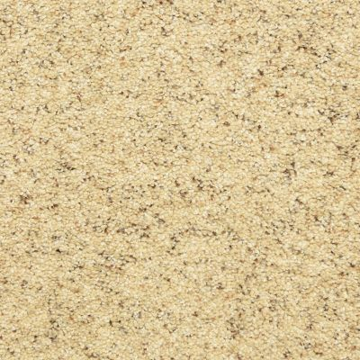 Dixie Home Star Power Sand Motif D02020179