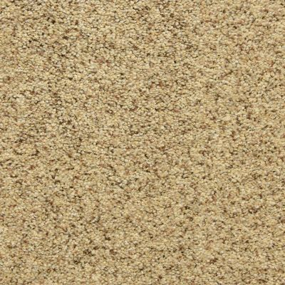 Dixie Home Star Power Oatmeal Raisin D02080181