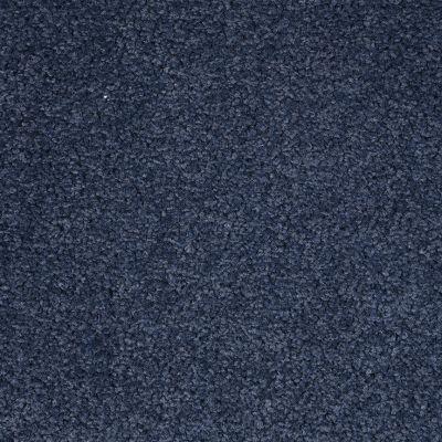 Dixie Home Spectrum Blue Ribbon D03061127