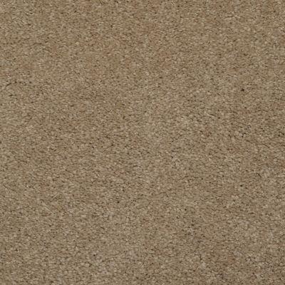 Dixie Home Soft & Silky Earth Stone G520536063