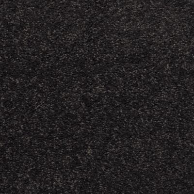 Dixie Home Soft & Silky Dark Secret G520566041