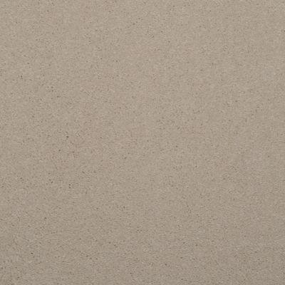 Dixie Home Enthralled Sand Dollar G522407509