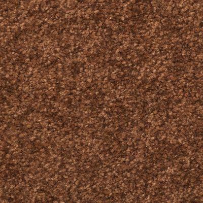 Dixie Home Inspiring Chocolate Chip G523977304