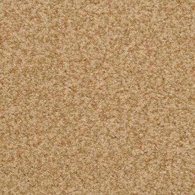 Dixie Home Semitones Cheetah G525626411