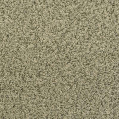 Dixie Home Semitones Rain Forest G525657431