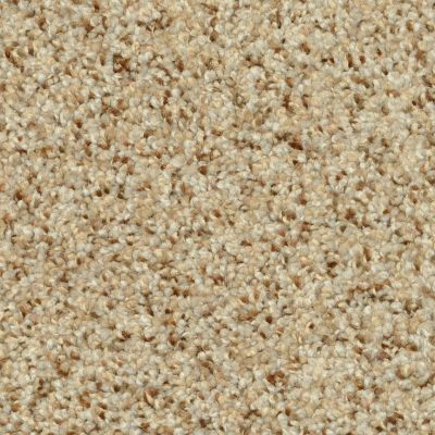 Dixie Home Oatmeal Raisin G526580181