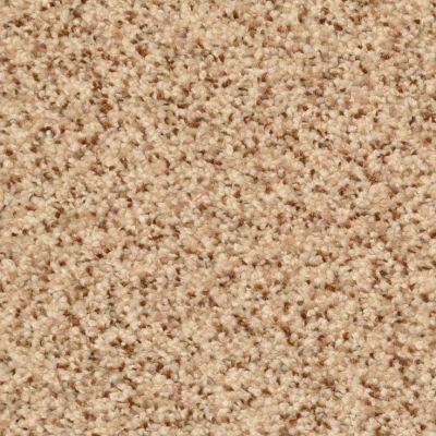 Dixie Home Pebble Mosaic G526630171