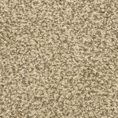 Dixie Home Colorworks Grey Scale G528780725