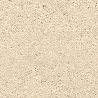 Dixie Home Attributes Soft Taupe G529222285