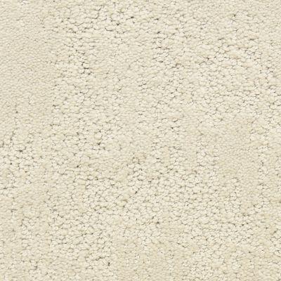 Dixie Home Attributes Powder G529282244
