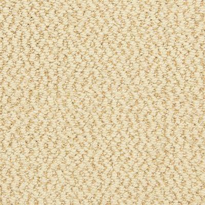 Dixie Home Hideaway Sequin G530122362