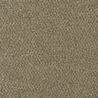 Dream Weaver Acclaim Sienna Sand 1324_680