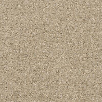 Dream Weaver Common Ground Soft Pine 2845_6317