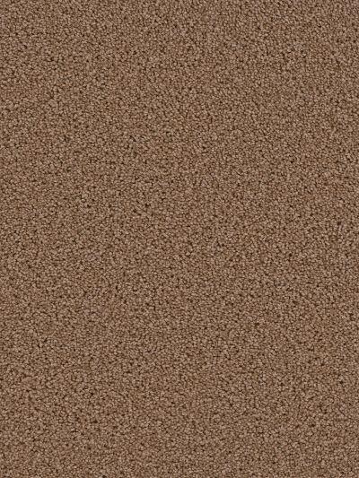 Dream Weaver Exceptional Balsam 7402_565
