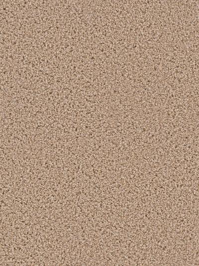 Dream Weaver Exceptional Wheat 7402_766