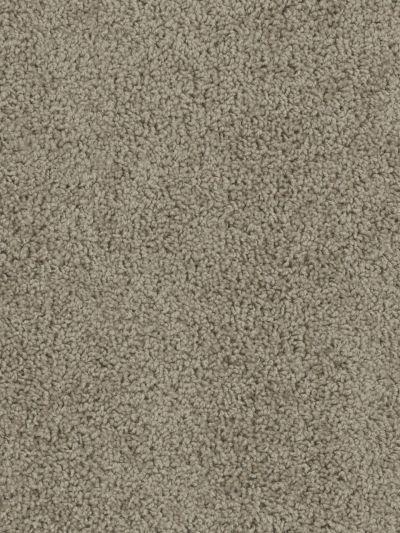 Dream Weaver Sensational Dried Grass 7450_693