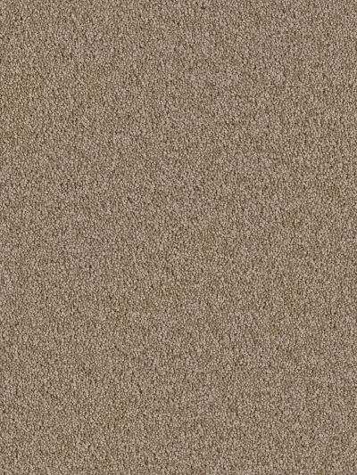 Dream Weaver Sensational Balsam 7450_565