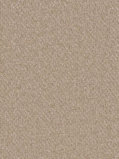 Dream Weaver Sensational Desert Storm 7450_665