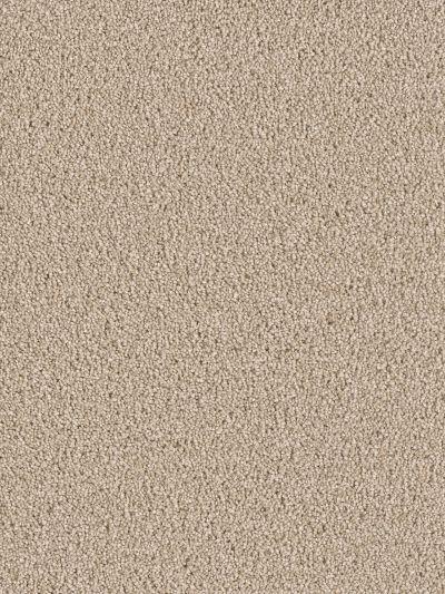 Dream Weaver Sensational Wheat 7450_766