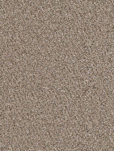 Dream Weaver Sensational Salt & Pepper 7450_736