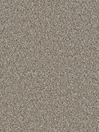 Dream Weaver Sensational Taupestone 7450_787