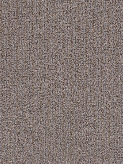 Dream Weaver Concord Polished Pebble 9325_155