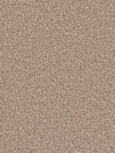 Dream Weaver Stunning Acorn 4765_858