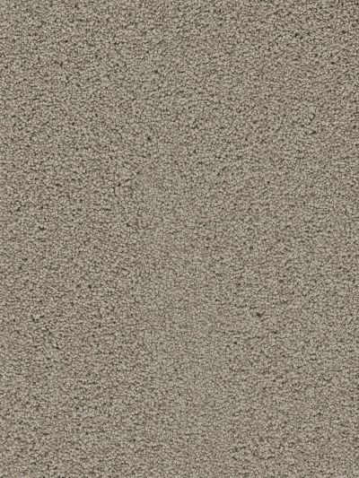 Dream Weaver Heavenly Taupe 4655_565