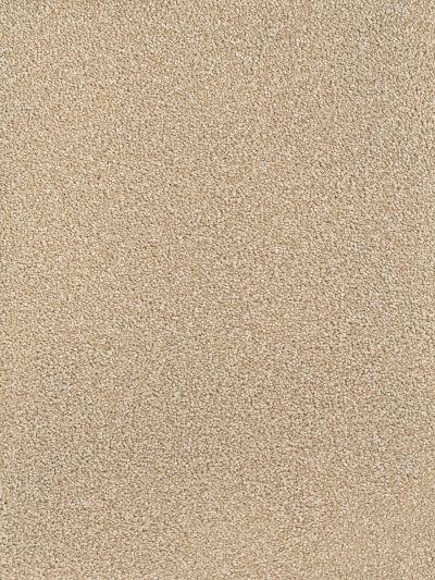 Dream Weaver Montauk Cashew 2560_530