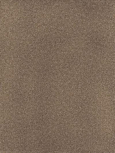 Dream Weaver Montauk Cocoa 2560_550