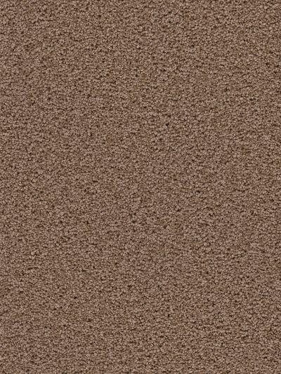 Dream Weaver Serenity Cocoa 9580_550