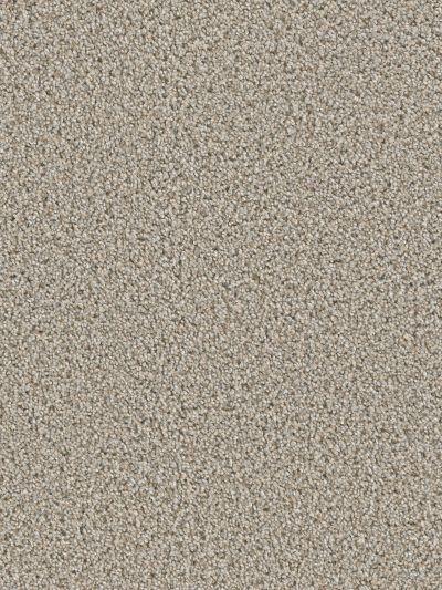 Dream Weaver Cosmopolitan II Iron Frost 8550_815