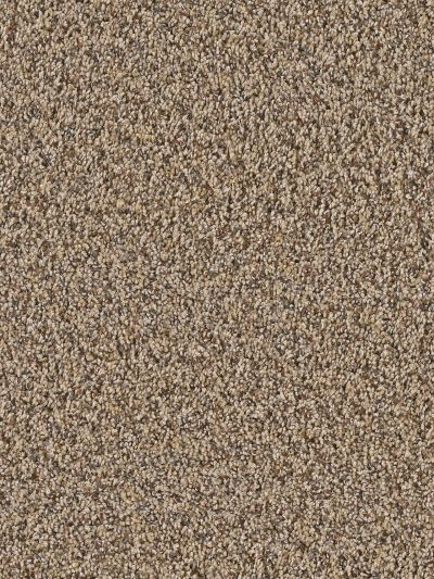 Dream Weaver Mardi Gras Leather 4090_858