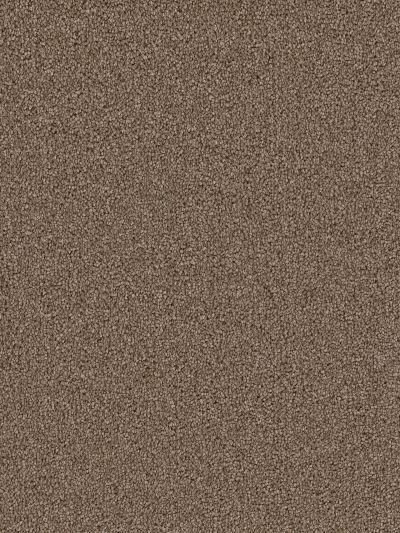 Dream Weaver Cape Cod Cocoa 2540_550