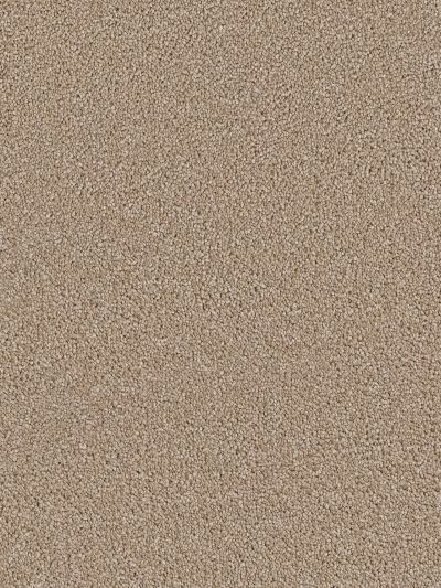 Dream Weaver Cape Cod Cashew 2540_530