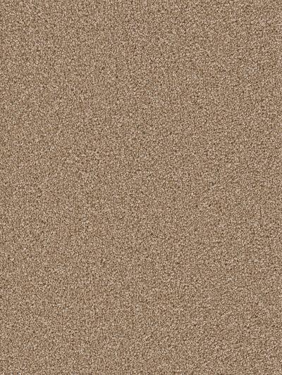 Dream Weaver Cape Cod Bamboo 2540_565