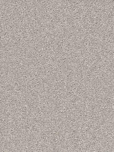 Dream Weaver Cape Cod Dove 2540_800