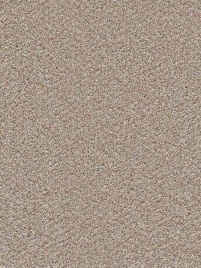 Dream Weaver Cape Cod Ash 2540_945