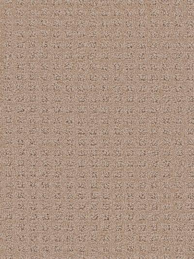 Dream Weaver Touch Of Class Cashew 1036_530