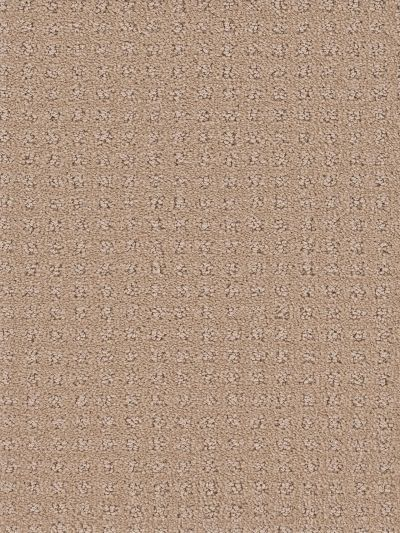 Dream Weaver Touch Of Class Lavish 1036_555