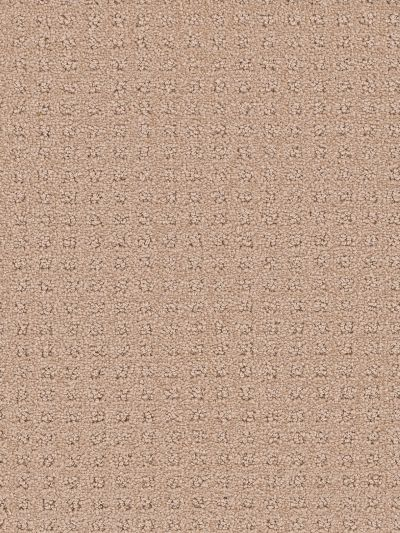 Dream Weaver Touch Of Class Sand 1036_710