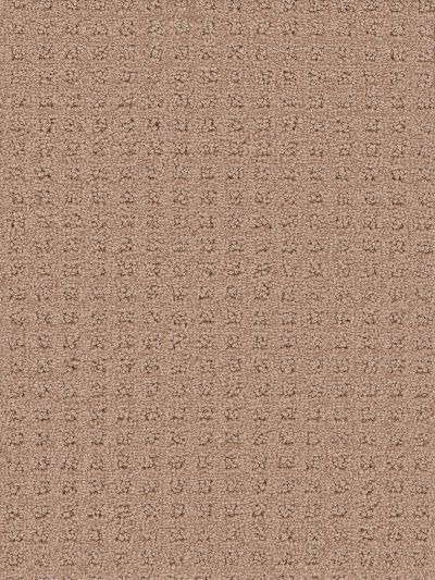 Dream Weaver Touch Of Class Mushroom 1036_715