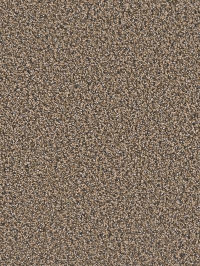 Dream Weaver Ridgeline II Gold Dust 5352_860