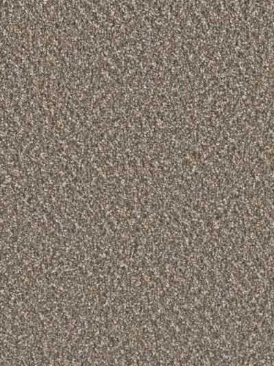 Dream Weaver Carnival Sawdust 6535_176