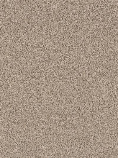 Dream Weaver Exceptional II Hazelnut Cream 7404_775