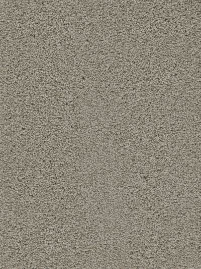 Dream Weaver Tranquility Taupe 9480_775