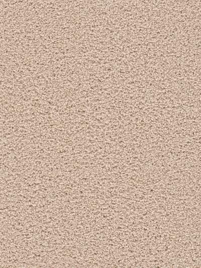 Dream Weaver Serenity Ivory 9580_730
