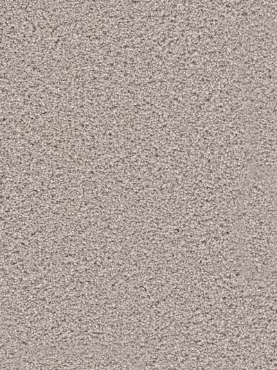Dream Weaver Serenity Dove 9580_800