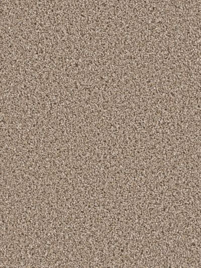Dream Weaver Gothem Tumbleweed 9600_883