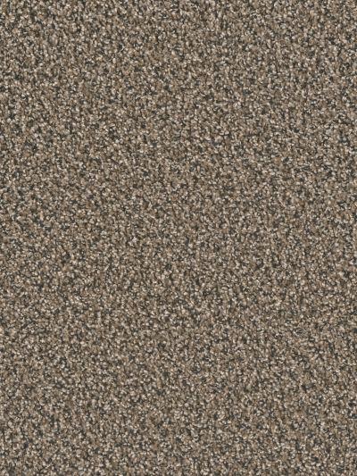 Dwellings Timberland II Magnetite DW028_726